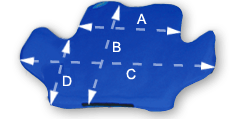 Duo Posture Cushion Measurements